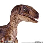 chronicle-collectibles-velociraptor-sixth-scale-figure-jurassic-park-img03