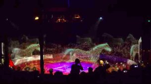 hologram respect am  circus roncalli animals