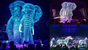 circus roncalli animals hologram