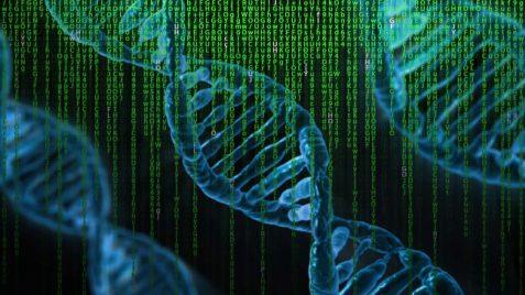 """dna genoma umano  IL CONTROVERSO SCIENZIATO HE JIANKUI  """"DISEGNER DI BAMBINI"""""""
