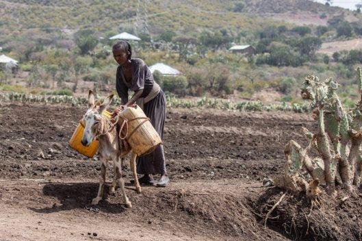 pobreza miseria  agua LA MAQUINA QUE ES CAPAZ DE FABRICAR AGUA POTABLE INCLUSO EN EL DESIERTO