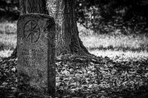 cementery  THE BEANS IN OLD RELIGION AND MYTHOLOGY