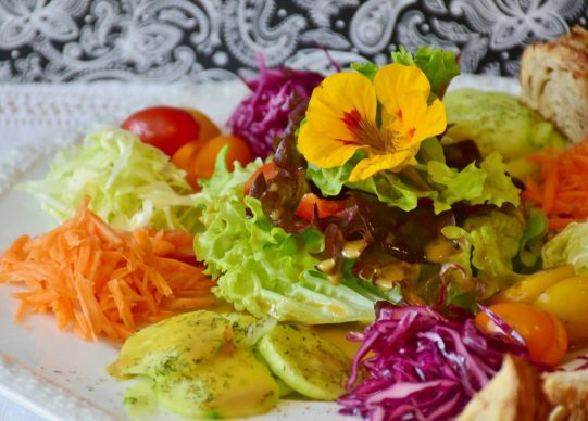 salat vegetables vitamins vegan WHAT IS THE VEGAN DIET?