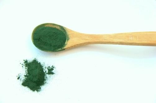 espirulina alga ¿EN QUÉ CONSISTE LA DIETA VEGANA?
