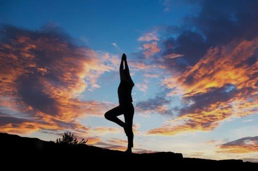 benessere salute IN COSA CONSISTE LA DIETA VEGANA?