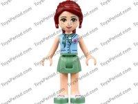 LEGO 41036 Jungle Bridge Rescue Set Parts Inventory and ...
