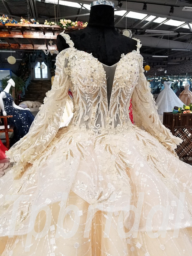 Champagne Ball Gown Wedding Dress Long Sleeve Plus Size
