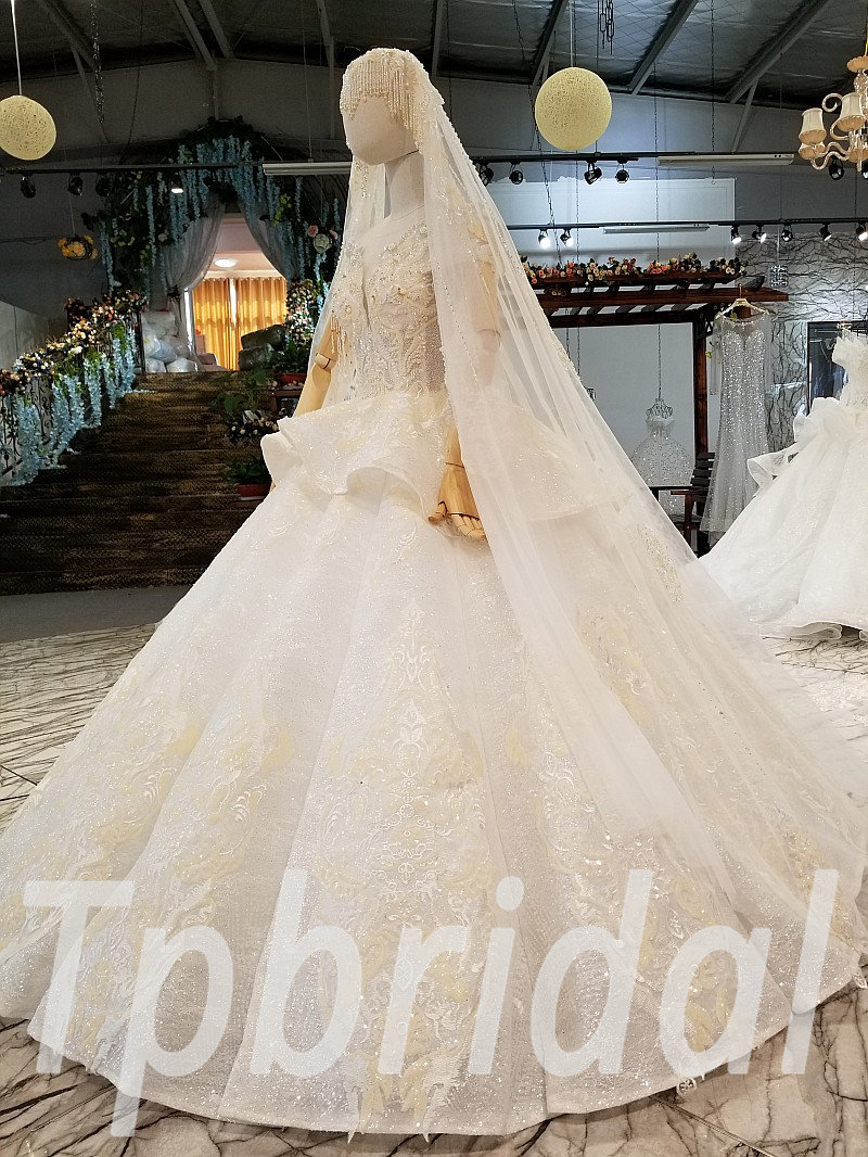 Wedding Dress With Veil Princess Ball Gown Plus Size Bridal Gown