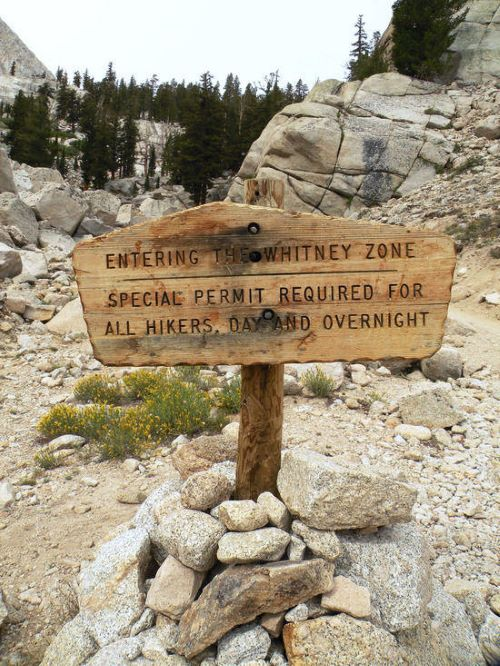 Whitney Zone sign