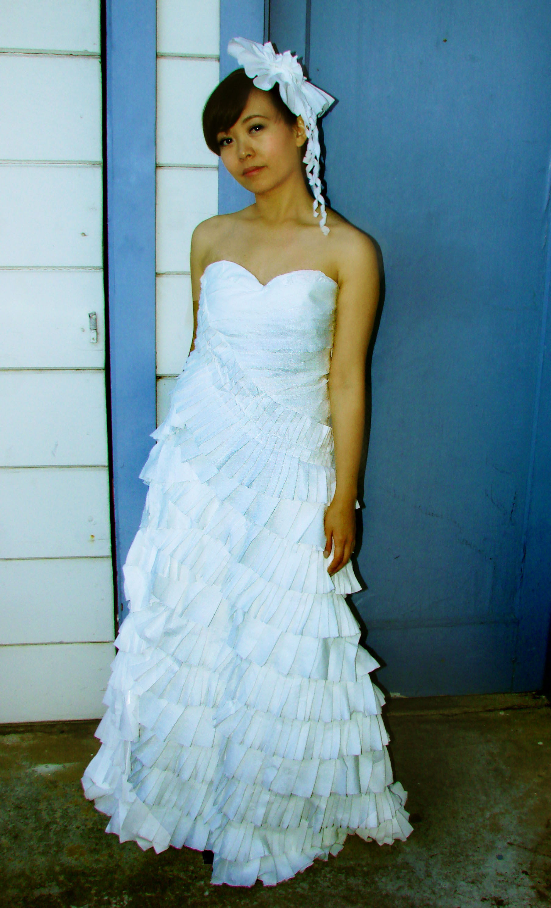 The 2011 Toilet Paper Wedding Dress Contest