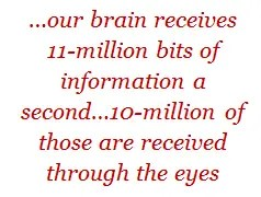 our brain receives