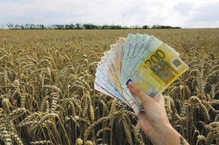 Photo of EU odobrila 190.000 evra za mlade poljoprivrednike iz Kučeva