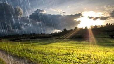 Photo of VREME U NEDELJU: Pretežno sunčano i toplo, posle podne naoblačenje, mestimično sa kišom i grmljavinom