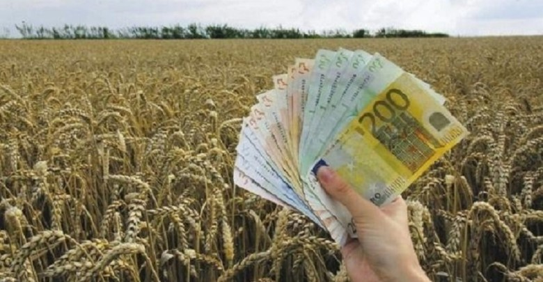 Photo of VELIKI PROJEKAT: I do 60.000 evra za mlade poljoprivrednike