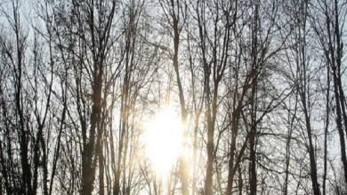 Photo of I DANAS ZUBATO SUNCE: Tokom jutra hladno, u toku dana sunčano i malo toplije