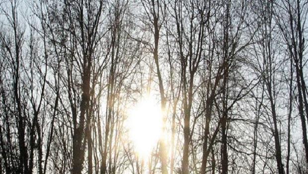 Photo of SUNČANA I TOPLA NEDELJA PRED NAMA: Danas do 15 stepeni, a ovakvo vreme nas čeka sledeće sedmice