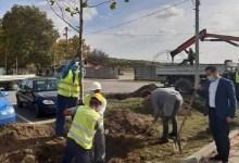 Photo of BORBA PROTIV ZAGAĐENJA: Počela jesenja sadnja stabala u Kostolcu