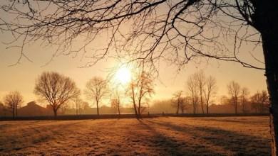 Photo of POSLE APRILSKE VEJAVICE STIŽE SUNCE: Danas hladno, jutro sa mrazem, moguća kratkotrajna kiša