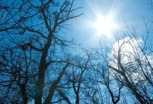 Photo of OD VIKENDA KREĆE ZAHLAĐENJE: Danas sunčano i veoma toplo, temperatura do 20 stepeni