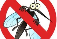 Photo of DVODNEVNI TRETMAN: U petak i subotu suzbijanje larvi komaraca u Velikom Gradištu