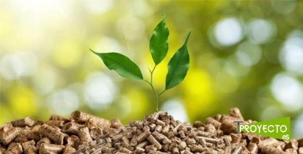 Biomasa. Cambio climático. Eficiencia Energética