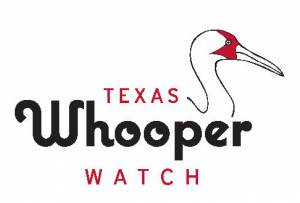TPWD: Texas Nature Trackers: Texas Whooper Watch: How to
