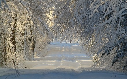 winter-1060526_640