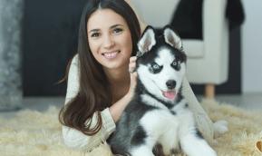 Origen del perro