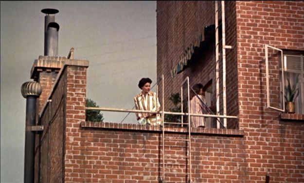 Rear Window 02