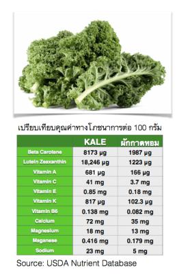 ผัก Kale มีประโยชน์ มีคุณค่าทางอาหาร อย่างไรบ้าง