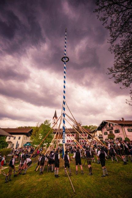 Maibaum-Altenbeuern-1009225