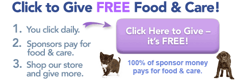 Animal Rescue Site