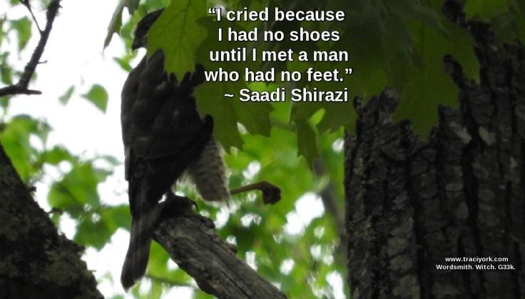 Quote Challenge Week Two Saadi Shirazi