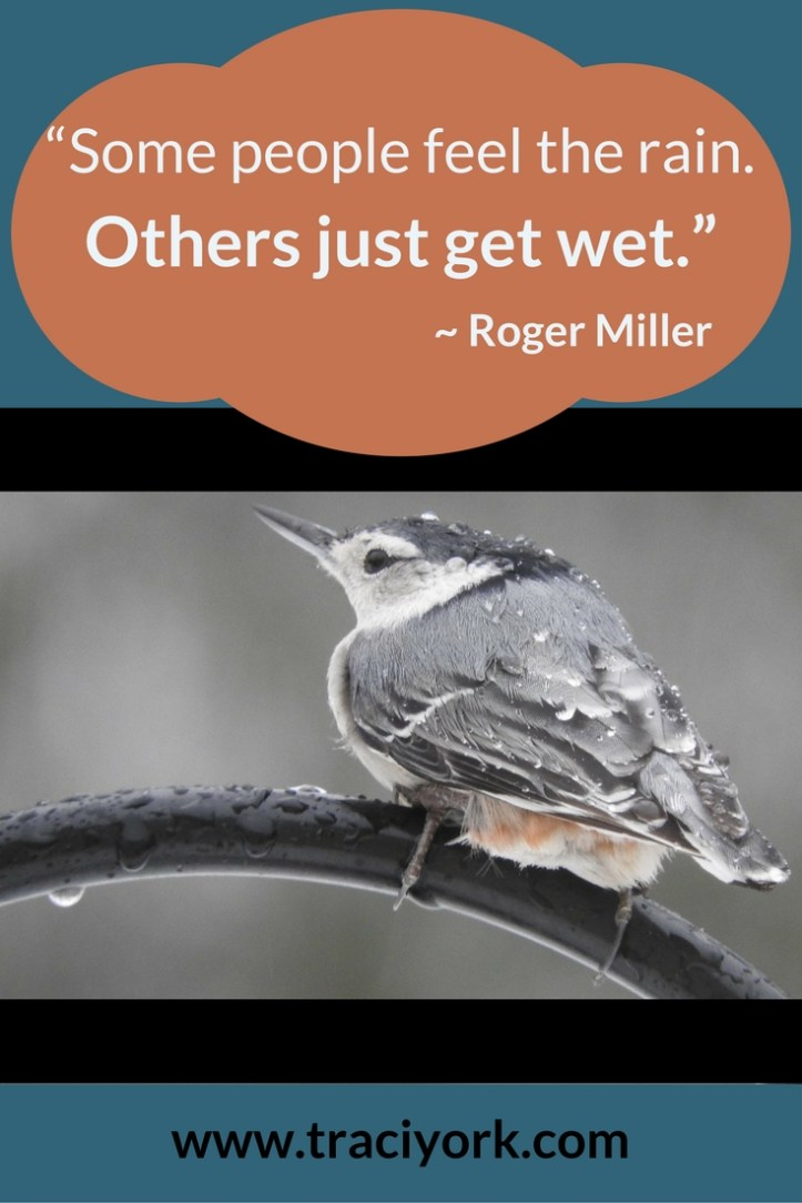 Quote Challenge Week 5 Roger Miller Quote