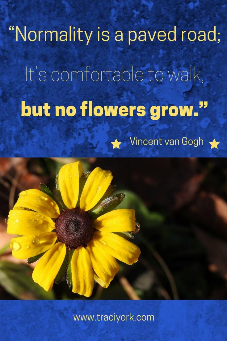 Quote Challenge Wrap Up Vincent van Gogh Quote