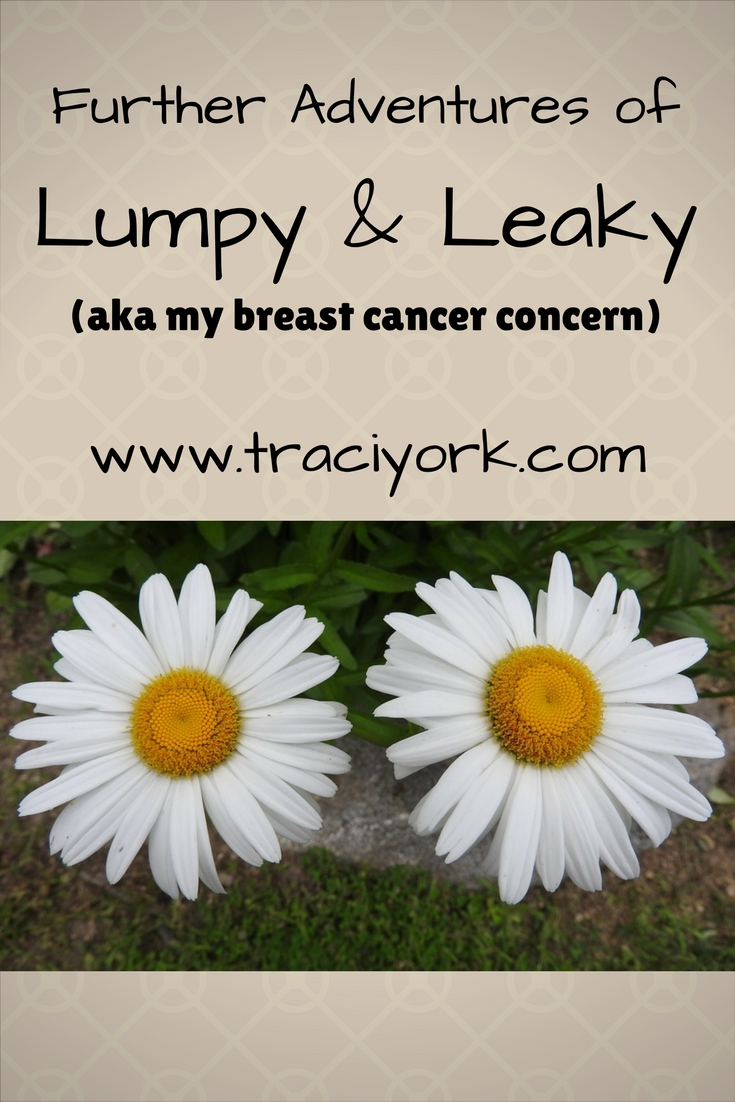 The Further Adventures of Lumpy and Leaky Blog graphic