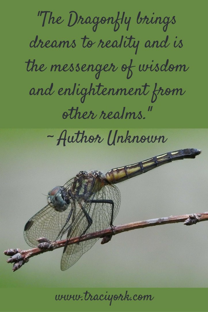 Dragonfly Quote, Author Unknown