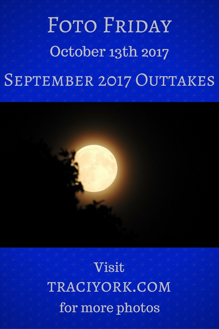 September 2017 Outtakes