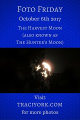 Harvest Moon October 2017
