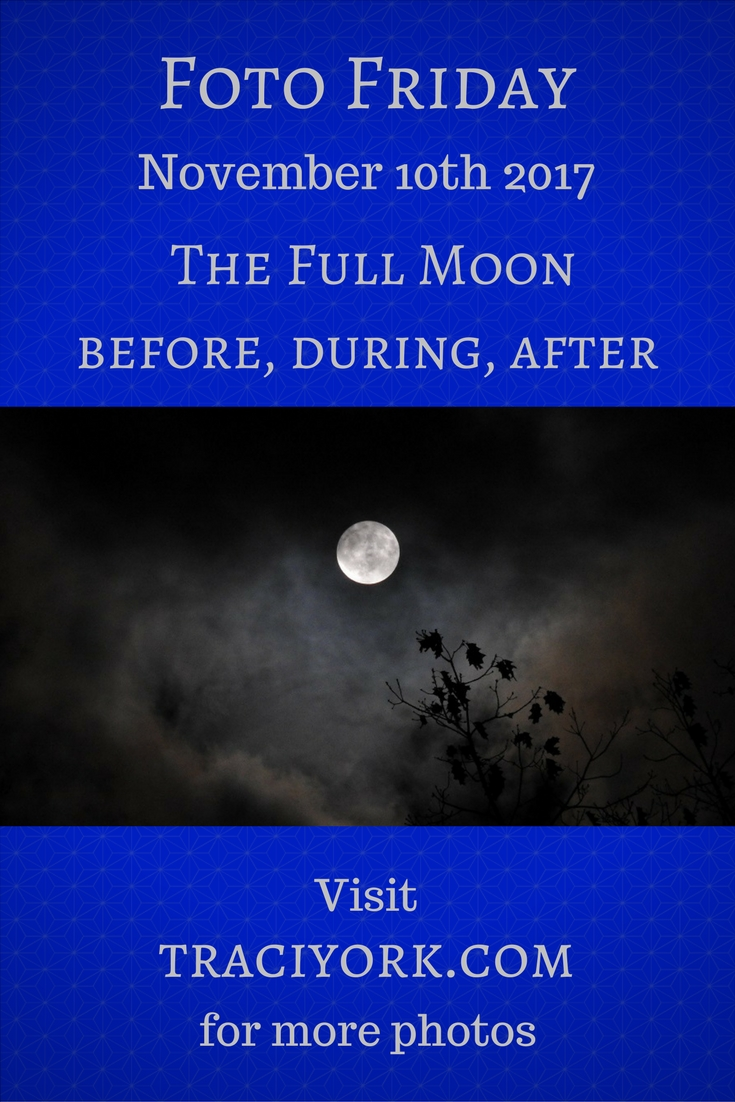 Full Moon before, during, and after plus bats