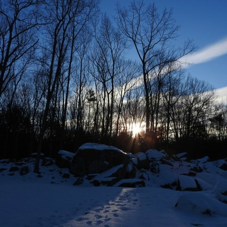 Bright Yule Blessings and Warm Winter Solstice Wishes