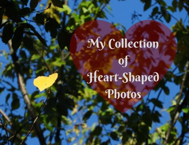 My Collection of Heart-Shaped Photos