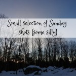 Small selection of Sunday shots