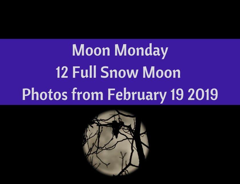 Moon Monday 12 Full Snow Moon Photos from February 19 2019 blog thumbnail