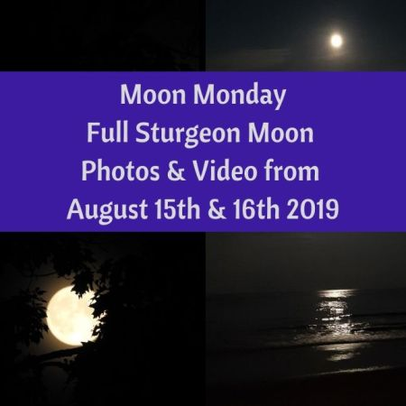 Moon Monday - Full Sturgeon Moon Photos & Video from August 15th & 16th 2019 blog thumbnail