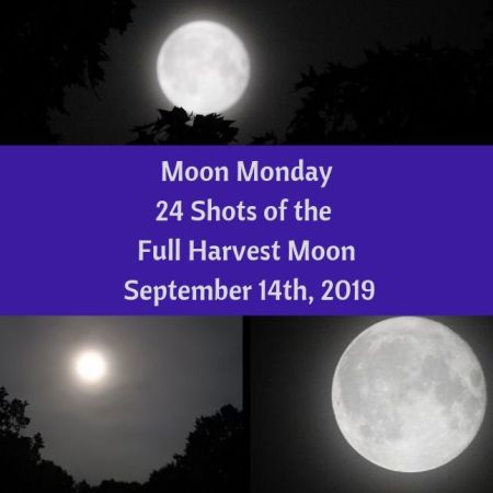 Moon Monday - 24 Shots of the Full Harvest Moon, September 14th, 2019 blog thumbnail