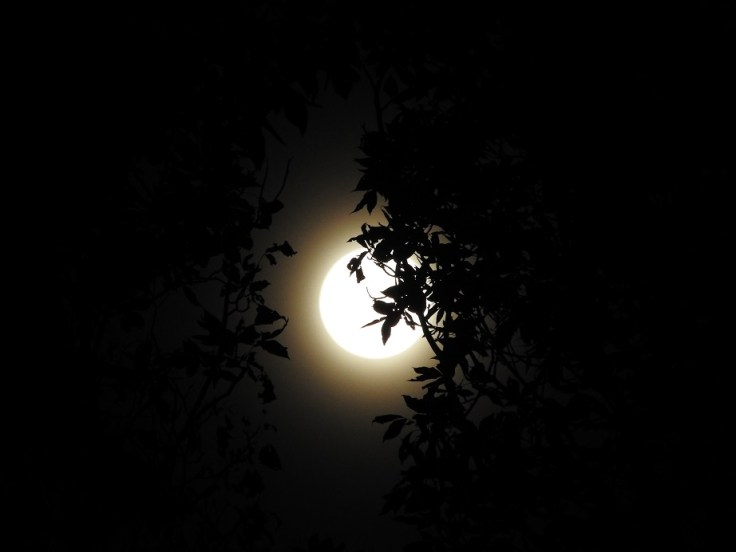 Full Hunter's Moon