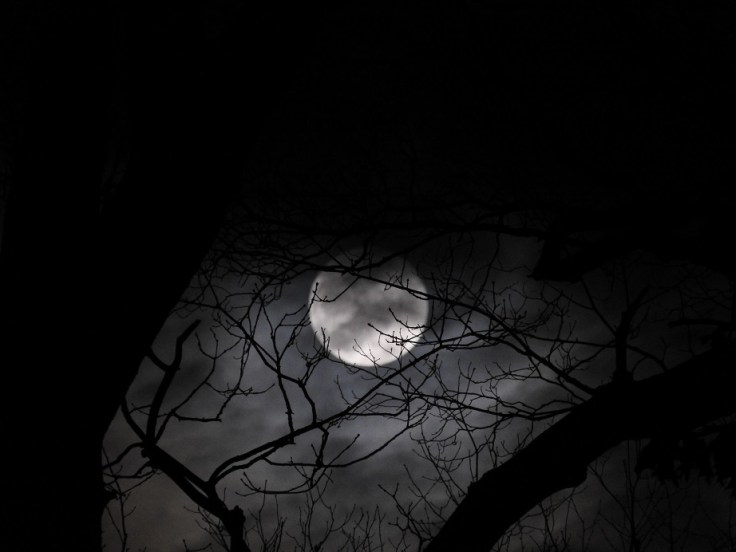 January 10th Full Wolf Moon