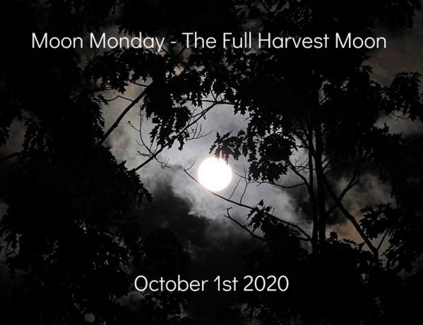 Seven more photos of the Full Harvest Moon October 1st 2020 blog thumbnail