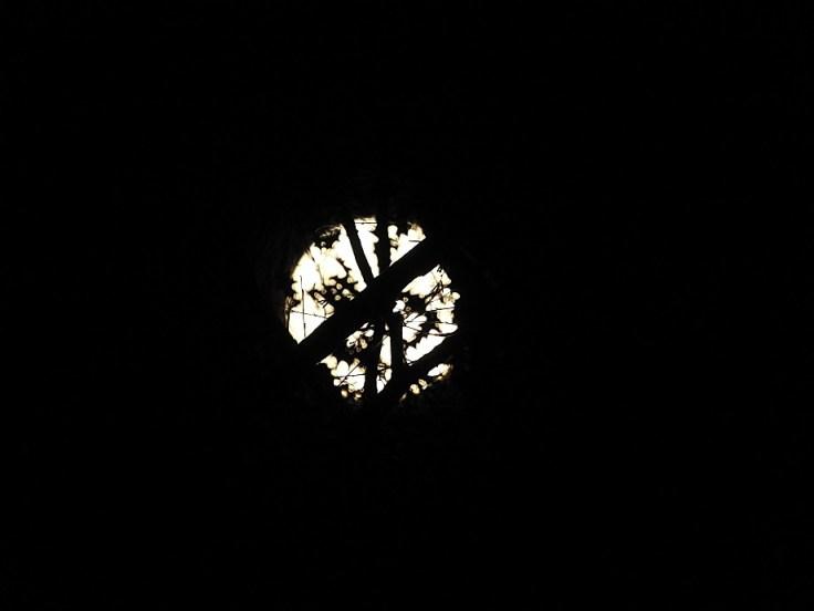 3. Halloween Blue Hunter's Moon
